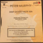 "Peter Murphy Deep Tour Sampler ES 7"" Promo 1990 Back Cover"