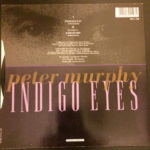 "Peter Murphy Indigo Eyes UK 7"" 1988 Back Cover"
