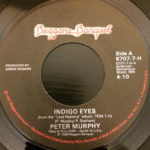 "Peter Murphy Indigo Eyes US 7"" 1988 A Label"