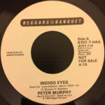 "Peter Murphy Indigo Eyes US 7"" Promo 1988 A Label"