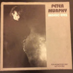 "Peter Murphy Indigo Eyes US 7"" Promo 1988 Front Cover"