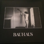 "Bauhaus In The Flat Field UK 12"" + CD 2013 Front Cover"