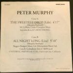 "Peter Murphy The Sweetest Drop ES 7"" Promo 1992 Back Cover"